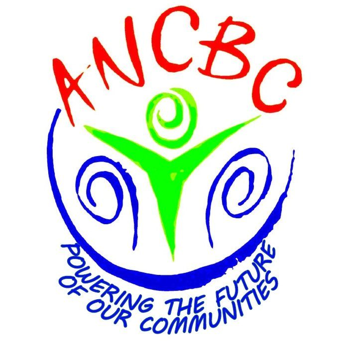 Annandale and Nithsdale Community Benefit Co Ltd